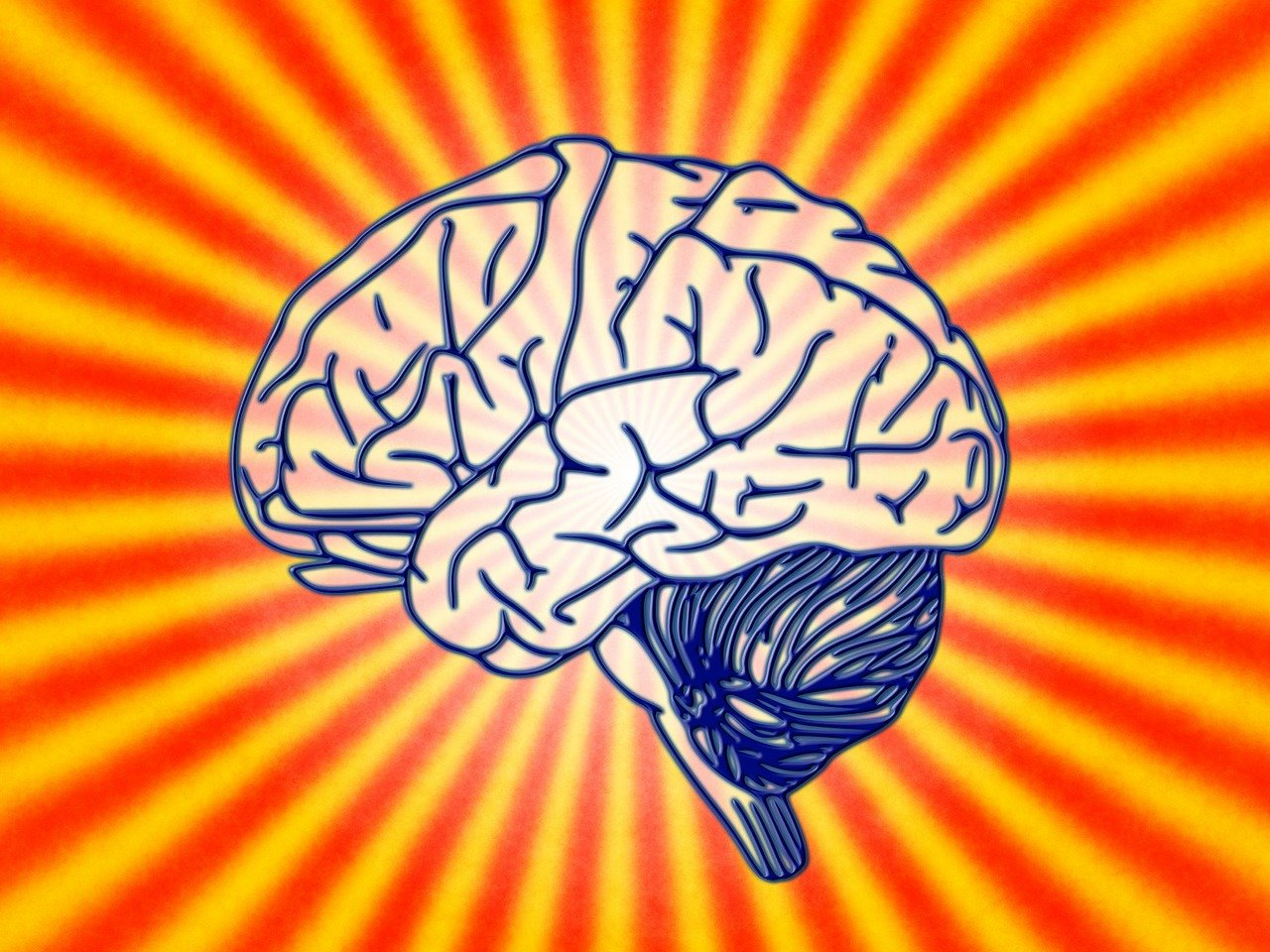 brainwave research